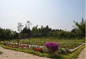 三塘镇柳杨坡生活污水处理站