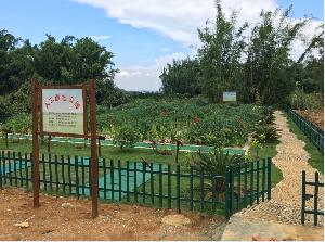 武鸣县双桥镇大塘屯生活污水